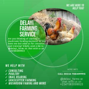 Delayi Farming